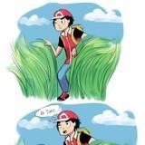 Pokemon Mashups